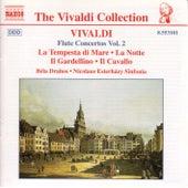 Play & Download Flute Concerti Vol. 2 by Antonio Vivaldi | Napster