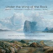 Under the Wing of the Rock by Various Artists