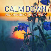 Play & Download Calm Down: Relaxing Background Music – New Age Tracks to Total Relax, Stress Relief, Peace of Mind, Inner Bliss, Endorphins Boost by Positive | Napster