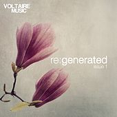 Voltaire Music Pres. Re:Generated Issue 1 by Various Artists