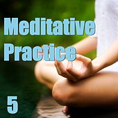 Play & Download Meditative Practice, Vol. 5 by Various Artists | Napster