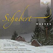 Play & Download Schubert: Complete Masses by Various Artists | Napster