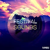 Festival Sounds by Various Artists