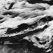 Oroboros (Remixes) by Umbra