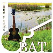 Play & Download Tone Poems by BAT | Napster