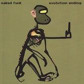 Evolution Ending by Naked Funk
