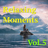 Play & Download Relaxing Moments, Vol. 5 by Various Artists | Napster