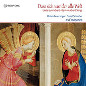 Dass sich wunder alle Welt: German Advent Songs by Various Artists