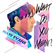 What Do You Mean? by Nate Evans