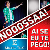 Play & Download Ai Se Eu Te Pego! (Ao Vivo) by Michel Teló | Napster