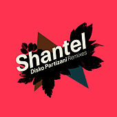 Disko Partizani Remixes by Shantel