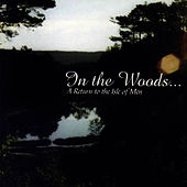 Play & Download A Return To The Isle Of Men by In The Woods | Napster