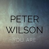 Play & Download You Are by Peter Wilson | Napster