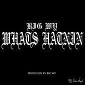 Whats Hatnin - Single by Big Wy
