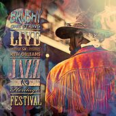 Play & Download Live at New Orleans Jazz & Heritage Festival by Brushy One String | Napster