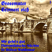 Grossmuter erinnert sich, Vol. 2 by Various Artists