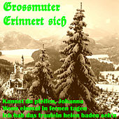 Grossmutter erinnert sich by Various Artists