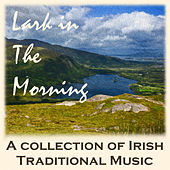 Play & Download Lark in the Morning: A Collection of Irish Traditional Music by Various Artists | Napster