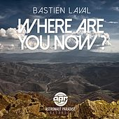 Where Are You Now by Bastien Laval