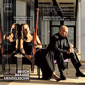Play & Download Bruch, Brahms & Mendelssohn: Trios by Clarigotto Duo | Napster
