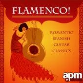 Flamenco! Romantic Spanish Guitar Classics by Various Artists