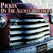 Play & Download Pickin' On The Allman Brothers by Pickin' On | Napster
