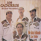 Play & Download Me Esta Fallando La Vida by Los Cachorros de Juan Villarreal | Napster