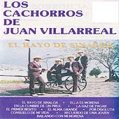 Play & Download El Rayo De Sinaloa by Los Cachorros de Juan Villarreal | Napster