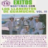 15 Exitos Nortenos Con Los Llaneritos De Guamuchil Vol. 3 by Los Llaneritos De Guamuchil