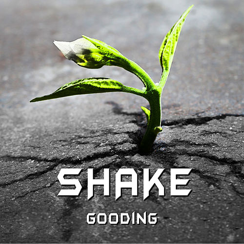 Play & Download Shake - Single by GOODING | Napster