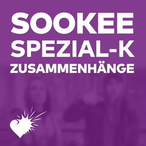 Zusammenhänge by Sookee