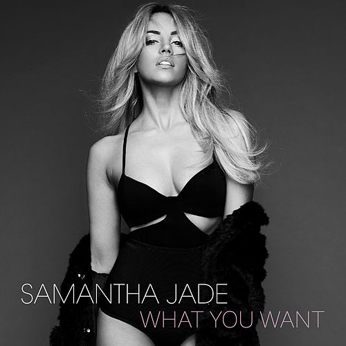 What You Want by Samantha Jade