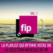 FIP, vol. 1 : La playlist qui rythme votre vie (La sélection musicale de FIP) de Various Artists