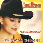 Play & Download Las Malandrinas by Jenni Rivera | Napster