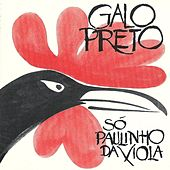 Só Paulinho da Viola by Galo Preto
