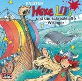 16/und der schreckhafte Wikinger von Hexe Lilli