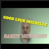 Good Luck Michelle by Sandy McKnight