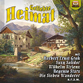 Play & Download Geliebte Heimat by Various Artists | Napster