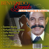 A Bailar,Tropicales de Colección by Bienvenido Granda