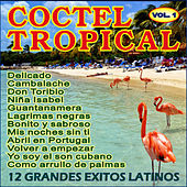 Play & Download Coctel Tropical by Various Artists | Napster
