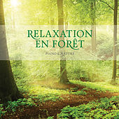 Play & Download Relaxation En Foret by Stuart Jones | Napster