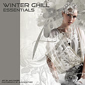 Winter Chill Essentials by Various Artists