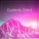 Excellently Chilled by Various Artists
