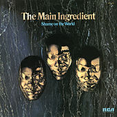 Play & Download Shame on the World by The Main Ingredient | Napster