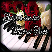 Play & Download Boleros Con los Mejores Tríos by Various Artists | Napster