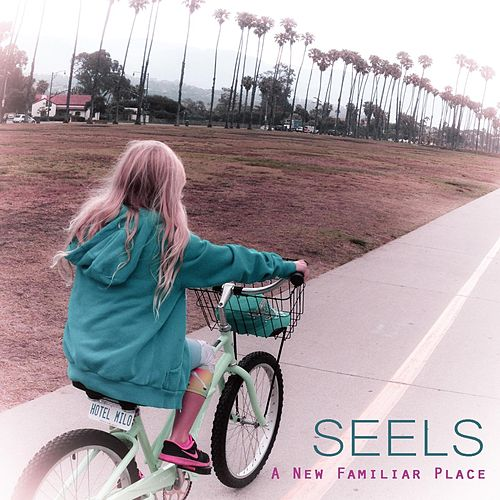 Play & Download A New Familiar Place by Seels | Napster
