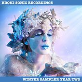Hooki-Sonic Recordings Winter Sampler Year Two by Various Artists