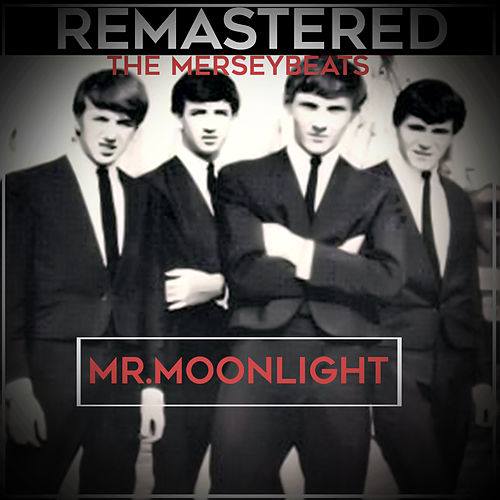 Mr. Moonlight by The Merseybeats