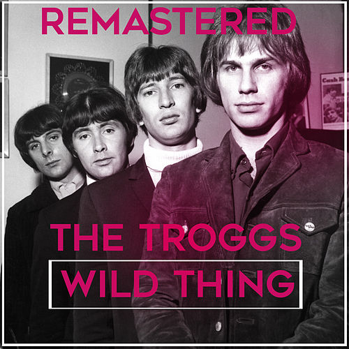 Wild Thing by The Troggs