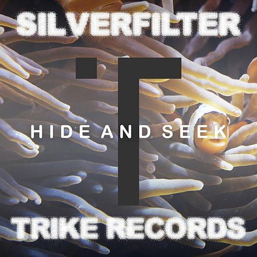 Hide and Seek by Silverfilter
